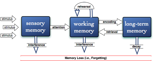theory of information processing apply to student learning